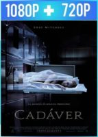 Cadáver (2018) HD 1080p y 720p Latino Dual
