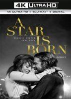 Nace una estrella (2018) 4K Ultra HD Latino Dual