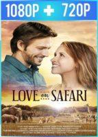 Love on Safari (2018) HD 1080p y 720p Latino Dual