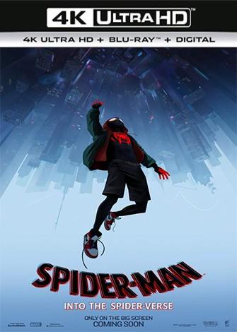 Spider-Man: Un nuevo universo (2018) 4K Ultra HD Latino Dual