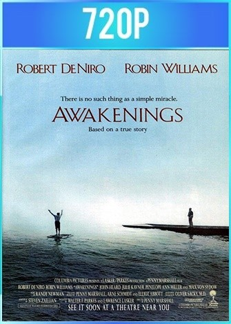 Despertares (1990) BRRip HD 720p Latino Dual