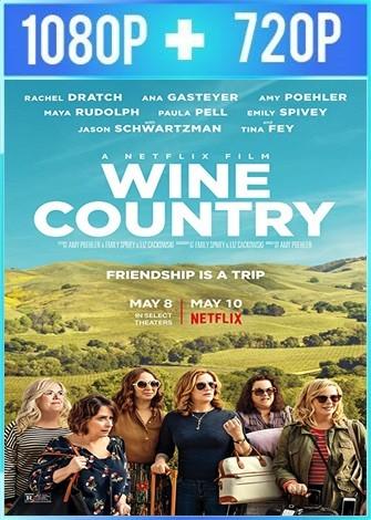 Entre vino y vinagre (2019) HD 1080p y 720p Latino Dual