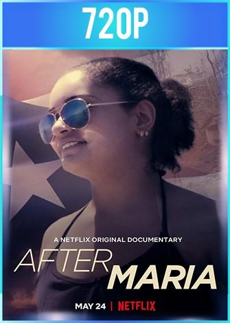 After Maria (2019) HD 720p Latino