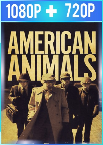 American Animals (2018) HD 1080p y 720p Latino