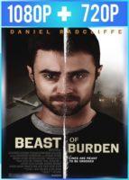 Beast of Burden (2018) HD 1080p y 720p Latino