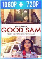 El buen Sam (2019) HD 1080p y 720p Latino