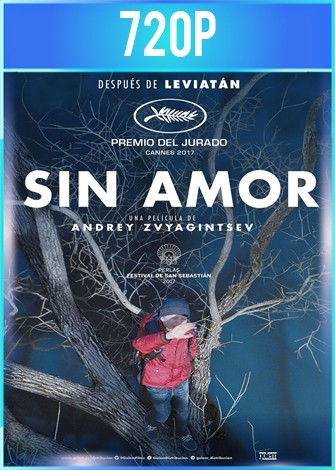 Sin amor (2017) BRRip HD 720p Latino Dual