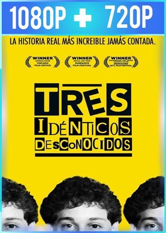 Tres idénticos desconocidos (2018) HD 1080p y 720p Latino