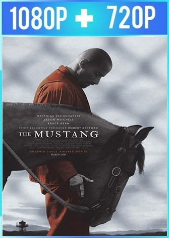 The Mustang (2019) HD 1080p y 720p Latino Dual