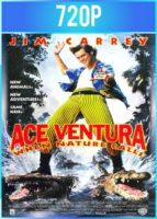Ace Ventura 2 Un Loco En África (1995) HD 720p Latino Dual