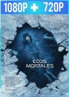 I Still See You [Ecos Mortales] (2018) HD 1080p y 720p Latino Dual