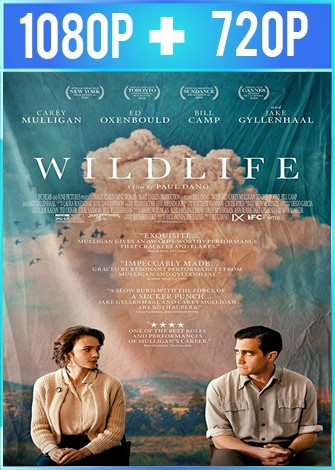 Wildlife (2018) HD 1080p y 720p Latino Dual