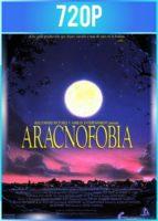Aracnofobia (1990) BRRip HD 720p Latino Dual