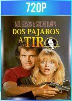 Bird on a Wire [Dos pájaros a tiro] (1990) BRRip HD 720p Latino Dual