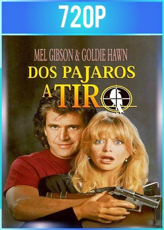 Bird on a Wire [Dos pájaros a tiro] (1990) BRRip HD 720p Latino Dual