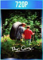 The Cure [El poder de la amistad] (1995) BRRip HD 720p Latino Dual