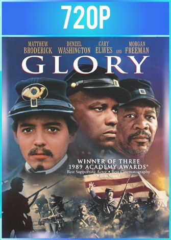 Tiempos de Gloria [Glory] (1989) BRRip HD 720p Latino Dual
