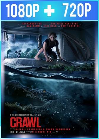 Crawl [Infierno en la tormenta] (2019) HD 1080p y 720p Latino Dual