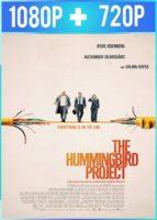 The Hummingbird Project (2018) HD 1080p y 720p Latino Dual