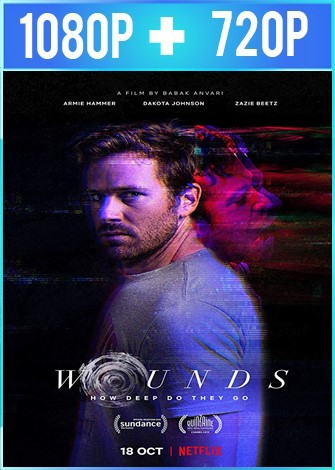 Wounds (2019) [Netflix] HD 1080p y 720p Latino Dual