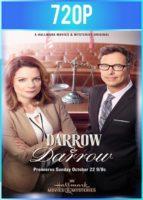 Darrow y Darrow Despacho De Abogados (2017) HD 720p Latino Dual