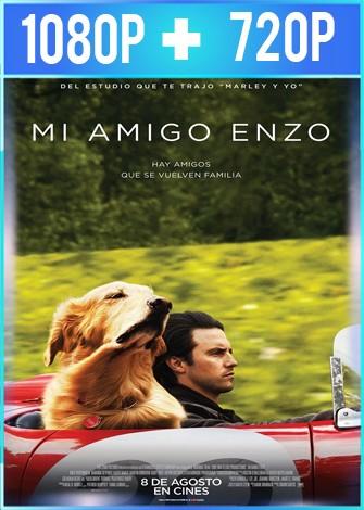 Mi amigo Enzo (2019) HD 1080p y 720p Latino Dual