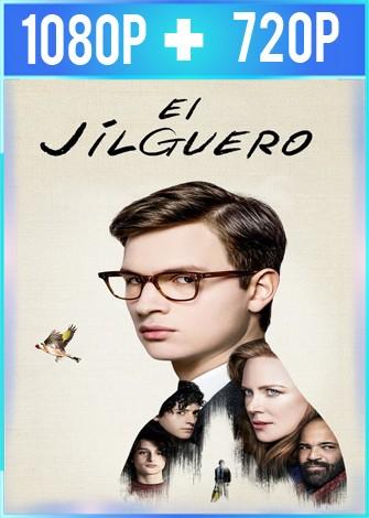 El jilguero (2019) HD 1080p y 720p Latino Dual