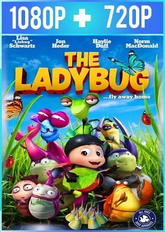 Ladybug En busca del Cañón Dorado (2018) HD 1080p y 720p Latino Dual
