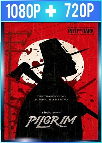 Pilgrim (2019) HD 1080p y 720p Latino Dual
