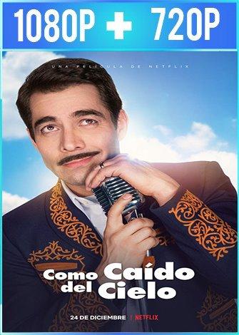 Como Caído Del Cielo (2019) HD 1080p y 720p Latino Dual