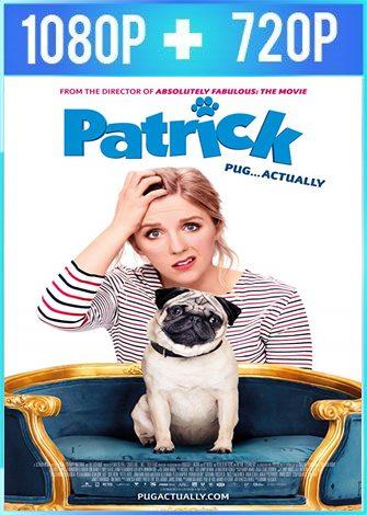 Patrick (2018) HD 1080p y 720p Latino Dual