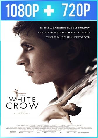 The White Crow [El bailarín] (2018) HD 1080p y 720p Latino Dual