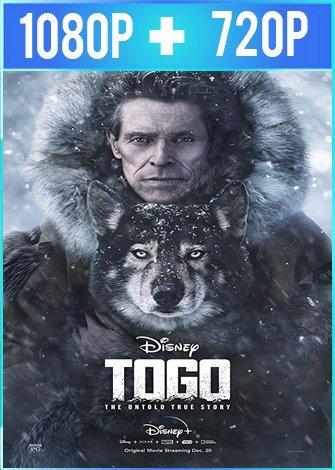 Togo (2019) HD 1080p y 720p Latino Dual