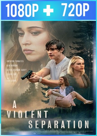 A Violent Separation (2019) HD 1080p y 720p Latino Dual