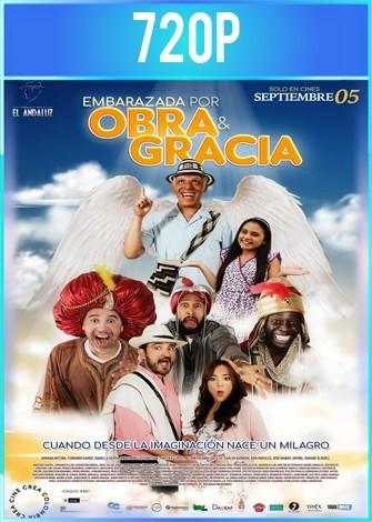 Embarazada por obra y gracia del espíritu santo (2019) HD 720p Latino
