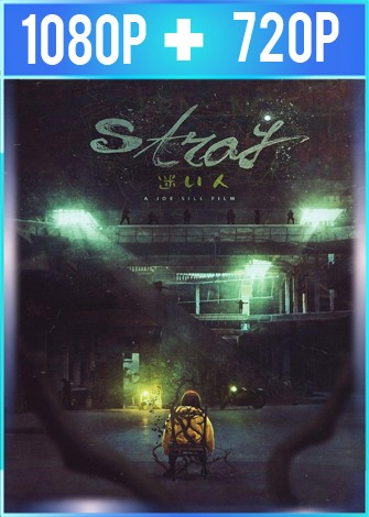 Stray (2019) HD 1080p y 720p Latino Dual