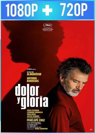 Dolor y gloria (2019) HD 1080p y 720p Castellano