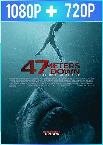 Terror a 47 metros: el segundo ataque (2019) HD 1080p y 720p Latino Dual