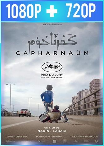Cafarnaúm (2018) HD 1080p y 720p Latino Dual