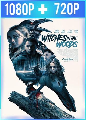 La noche de la bruja (2019) HD 1080p y 720p Latino Dual