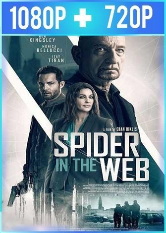La trampa de la araña (2019) HD 1080p y 720p Latino Dual