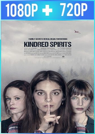 Kindred Spirits (2019) HD 1080p y 720p Latino Dual