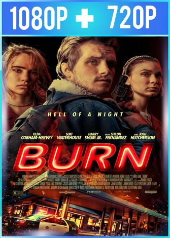 Burn (2019) HD 1080p y 720p Latino Dual