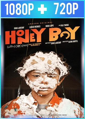 Honey Boy (2019) HD 1080p y 720p