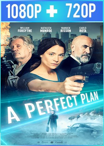 A Perfect Plan (2020) HD 1080p y 720p