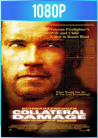 Daño colateral (2002) HD 1080p Latino Dual