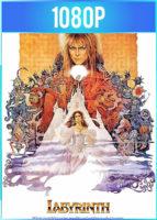 Laberinto (1986) HD 1080p Latino Dual