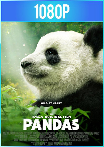 Pandas (2018) Documental HD 1080p Latino Dual