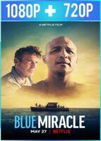 Milagro azul (2021) HD 1080p y 720p Latino Dual