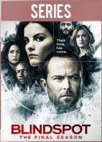Blindspot Temporada 5 Completa (2020) HD 720p Latino Dual